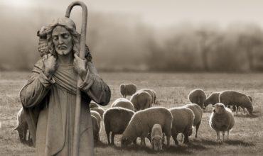 Arcibiskup Fulton Sheen: Stratená ovca, minca a márnotratný syn