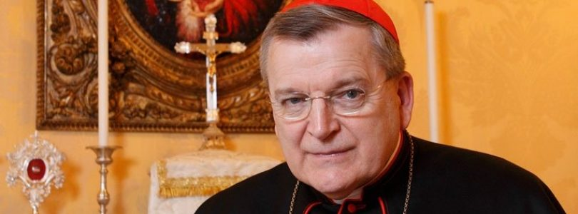 Kardinál Burke: Navodzuje sa dojem, akoby vznikala nová Cirkev bez primátu pápeža