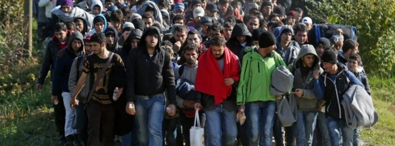 Kardinál Burke vyzval veriacich, aby sa vzopreli vládam, ktoré podporujú masívnu imigráciu